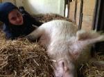 WDR - Tiere suchen ein Zuhause - Hof Butenland - Anna mit Erna